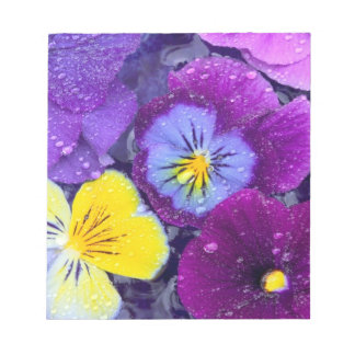 Pansy flowers floating in bird bath with dew notepad