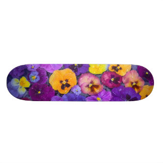 Pansy flowers floating in bird bath with dew skate board deck