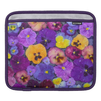 Pansy flowers floating in bird bath with dew sleeves for iPads