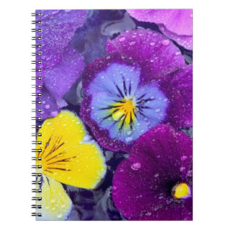 Pansy flowers floating in bird bath with dew spiral note book