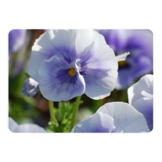 "Pansy Flowers 5"" X 7"" Invitation Card"