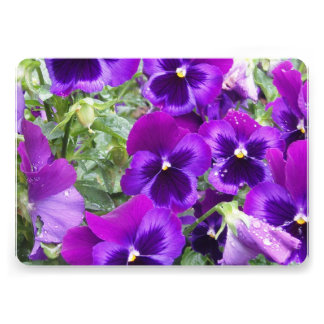 Pansy Flowers Personalized Announcements