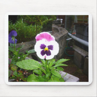 Pansy Galore Mouse Pad