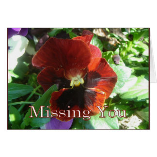 Pansy Missing You Greeting Card