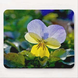 Pansy Perfection Mousepad