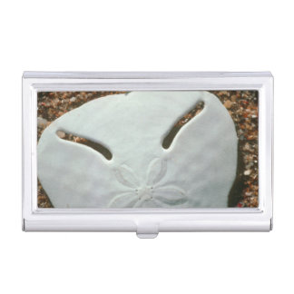 Pansy Shell Urchin (Echinodiscus Bisperforatus) Business Card Holder