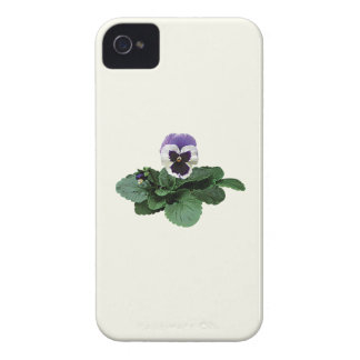 Pansy Takes a Bow iPhone 4 Case-Mate Cases