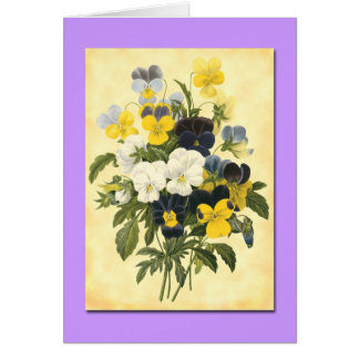 Pansy Violets Blank Botanical Art Cards Greeting Cards