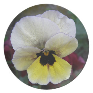 Pansy White and Yellow Plate
