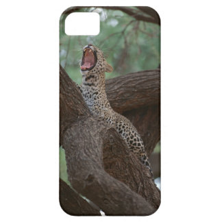Panther Case For The iPhone 5
