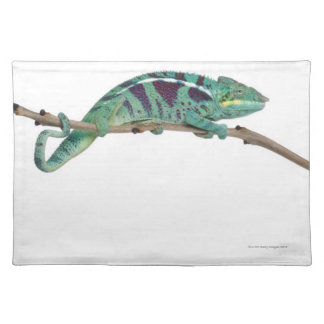 Panther Chameleon Nosy Be (Furcifer pardalis) Placemat