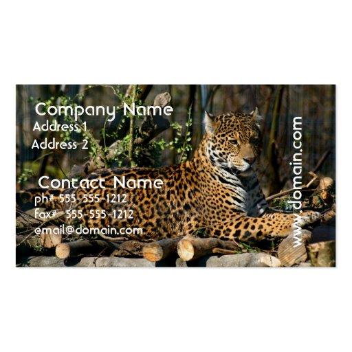 Panthera Jaguar Business Card