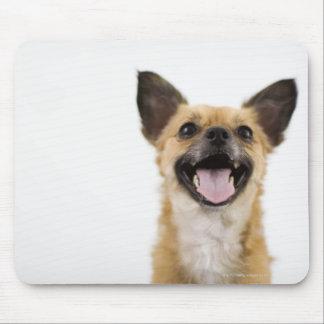 Panting dog mouse pad
