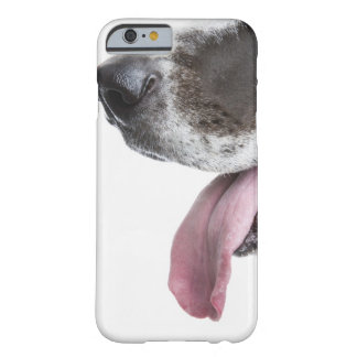 Panting Harlequin Great Dane Barely There iPhone 6 Case