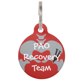 PAO Recovery Team Dog Tag