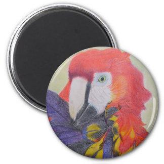 Papagei 6 Cm Round Magnet