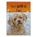 Papa's Birthday Greeting Card