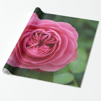 Paper frozen gift, 76.2 cm X 1.8 m Pink Macro