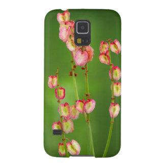Paper Hearts (Rumex Woodii), Ukhahlamba Galaxy S5 Cover