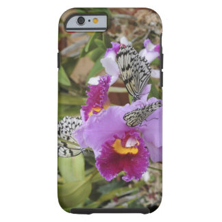 Paper Kite Butterflies (Idea leuconoe) on Tough iPhone 6 Case