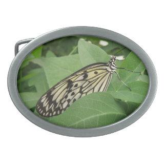 Paper Kite Butterfly Macro Belt Buckle