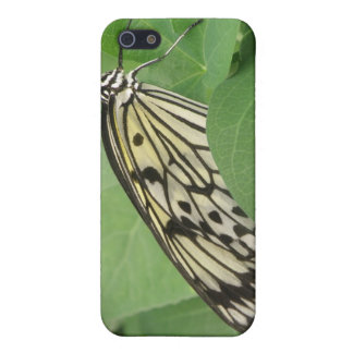Paper Kite Butterfly Macro i iPhone 5/5S Cases