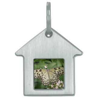 Paper Kite Butterfly Pet Tag