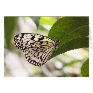 Paper Kite Card