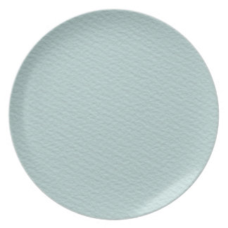 Paper light blue plate