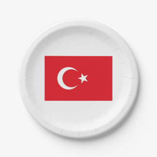 Papers placard (s) Turkish flag. Paper Plate