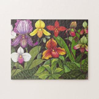 Paphiopedilum Lady Slipper Orchids Puzzle