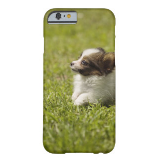 Papillon 2 barely there iPhone 6 case