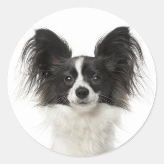 Papillon Black And White Puppy Dog - Love Puppies Classic Round Sticker