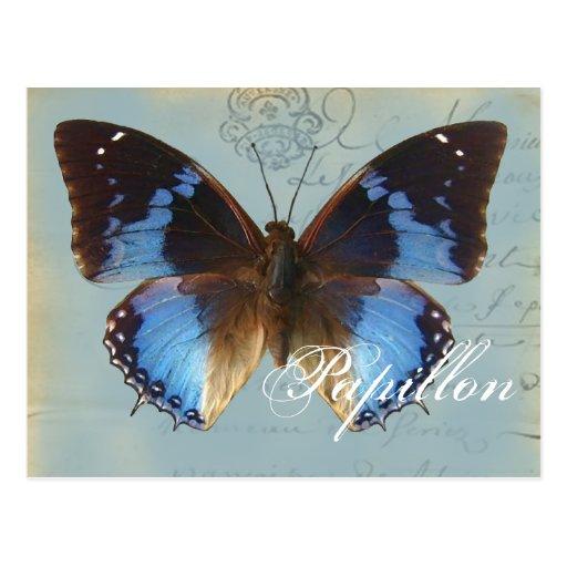 Papillon bleu post cards
