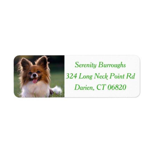 Papillon Brown & White Puppy Dog - Green Return Address Label
