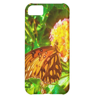 Papillon Butterfly Case For iPhone 5C