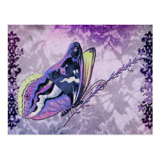 PAPILLON COLORÉ in LILAC, PURPLE and SPRING GREEN Postcard