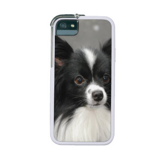 Papillon Dog iPhone 5 Cover