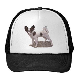 Papillon Dog Hats