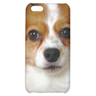Papillon Dog iPhone Case iPhone 5C Cover