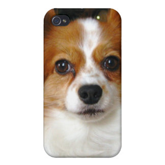 Papillon Dog iPhone Case iPhone 4/4S Cases