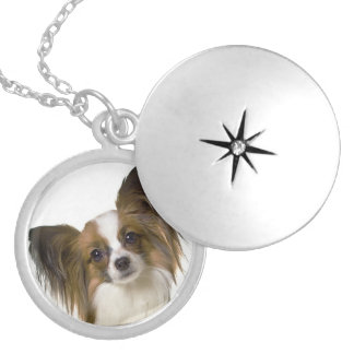 papillon.png silver plated necklace