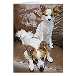 Papillon Puppies 6 Months Note Card