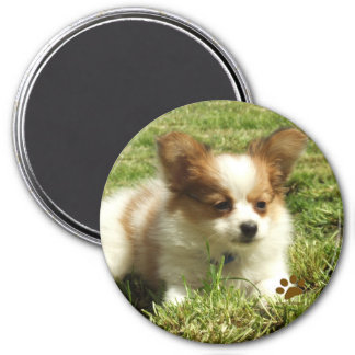 Papillon Puppy 7.5 Cm Round Magnet
