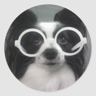 Papillon Puppy Classic Round Sticker
