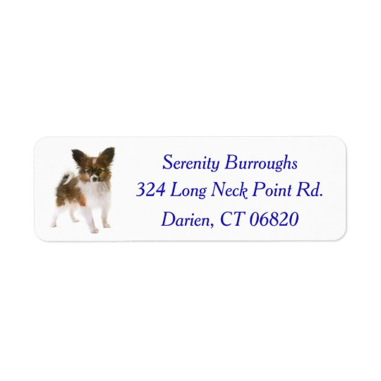 Papillon Puppy Dog Blue