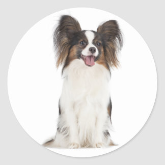 Papillon Puppy Dog - Love Puppies Classic Round Sticker