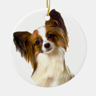 Papillon puppy Isolated on editable Background Pil Christmas Ornament