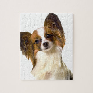 Papillon puppy Isolated on editable Background Pil Jigsaw Puzzle