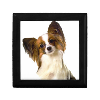 Papillon puppy Isolated on editable Background Pil Small Square Gift Box
